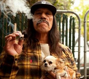 Если вы курите, все вокруг вас это знают